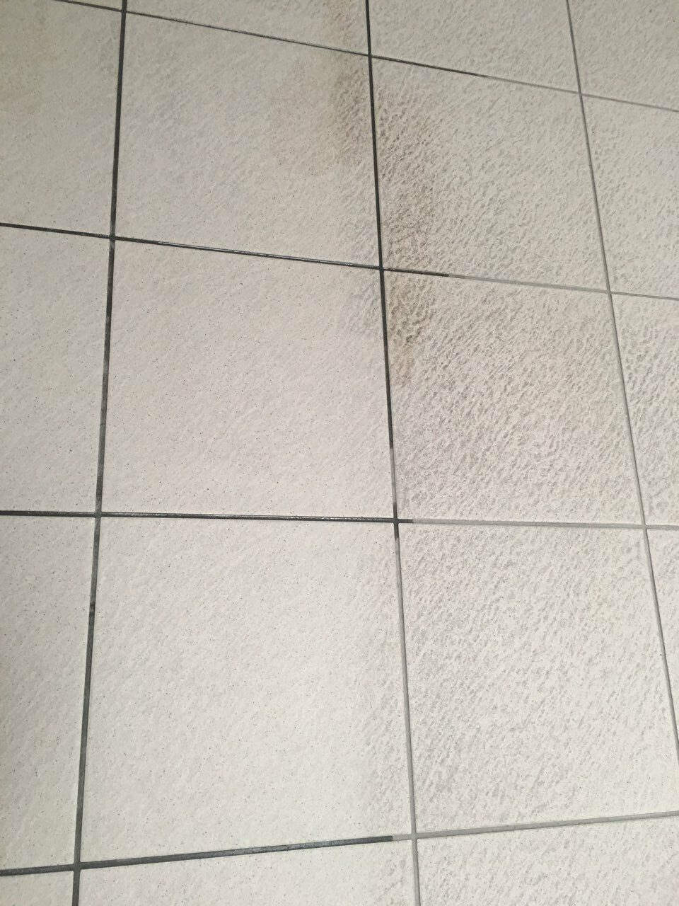 Beltéri öltöző kőpadlózat és fuga takarítsa csapvízzel Rotowash padlótisztító géppel